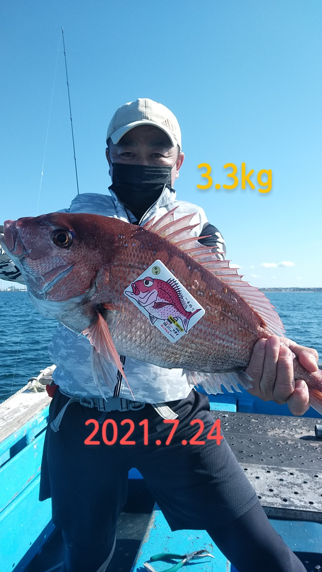 中盤で3.3kg大鯛が獲れました。ラスト30分には1発ありましたが、フックアウトです。